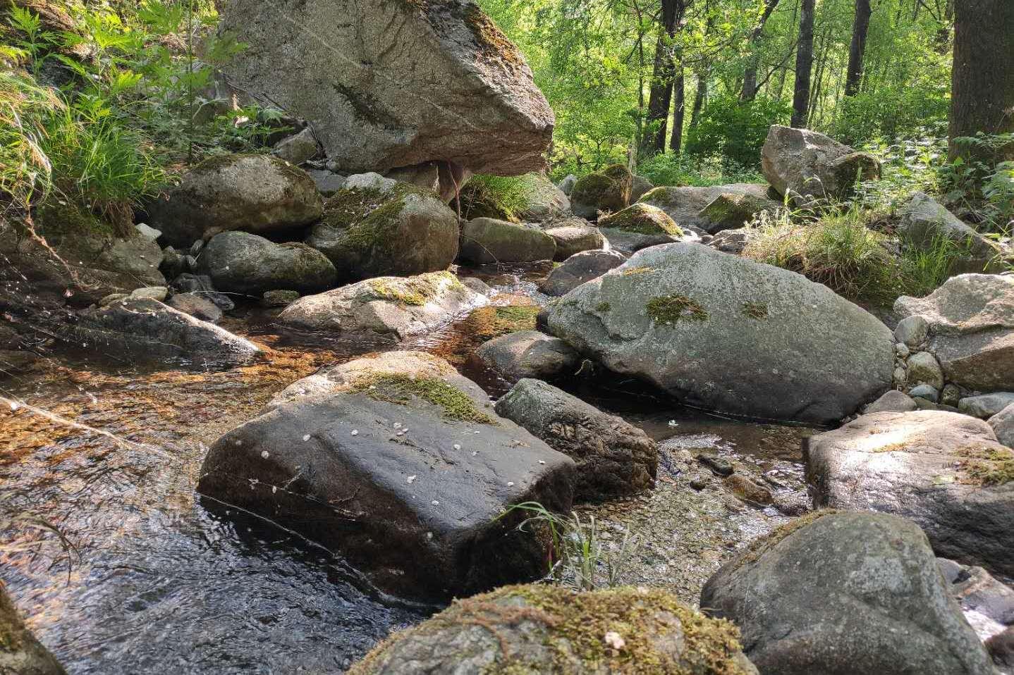 这就是真实的终南山居生活,门前的小溪都这么美