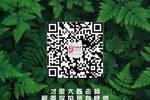 詳細解析北京舞蹈學院中國古典舞專業二:813學科方向歷史與理論