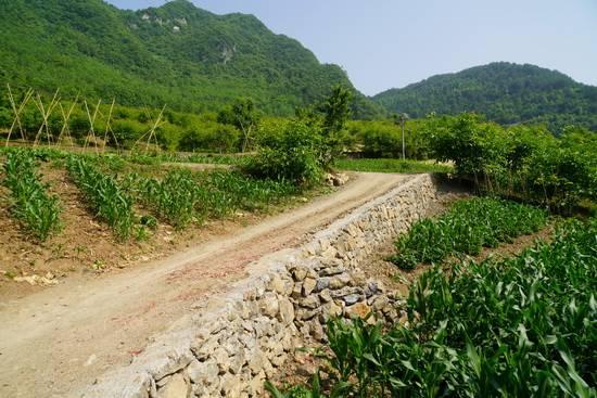 """秭归县砚窝台村:""""幸福村落""""创建成效好 村民自发修路效率高"""