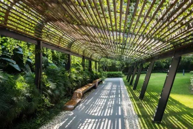 <b>木纹漆景观花架浏览,配上种种藤蔓植物</b>