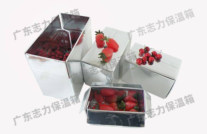 新型泡沫保温盒包装 台州泡沫包装