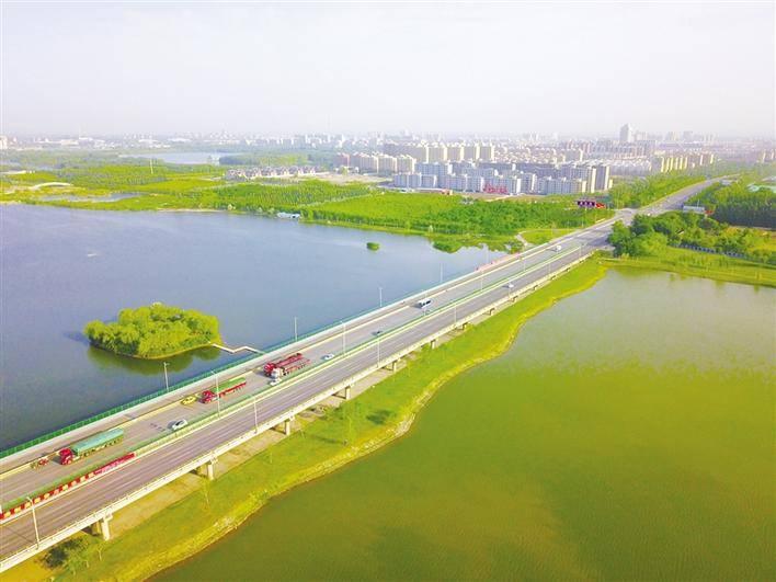 中卫黄河流域生态治理的一幕