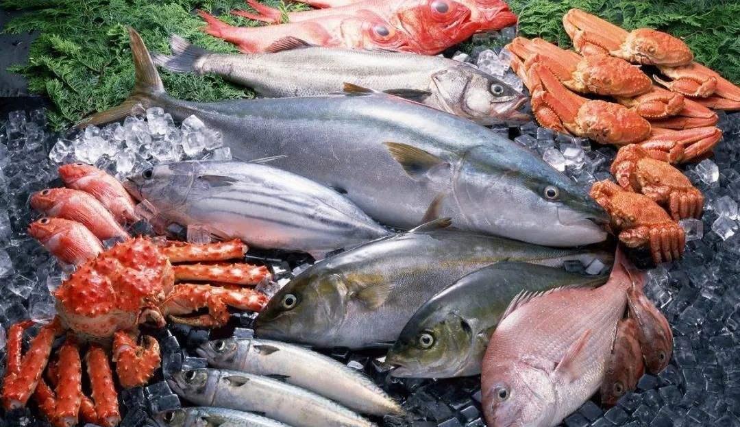 新闻发布会 | 冯录召:未发现食用海鲜产品经过消化道感染新冠病毒的证据