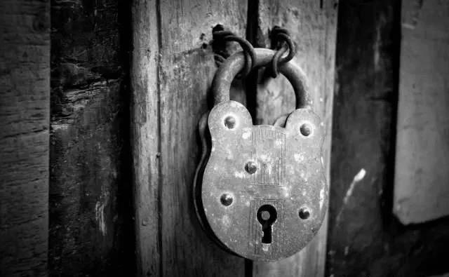TOKOZ Taiwei:这个时代,家庭需要智能锁。你开始在家里使用它们了吗?