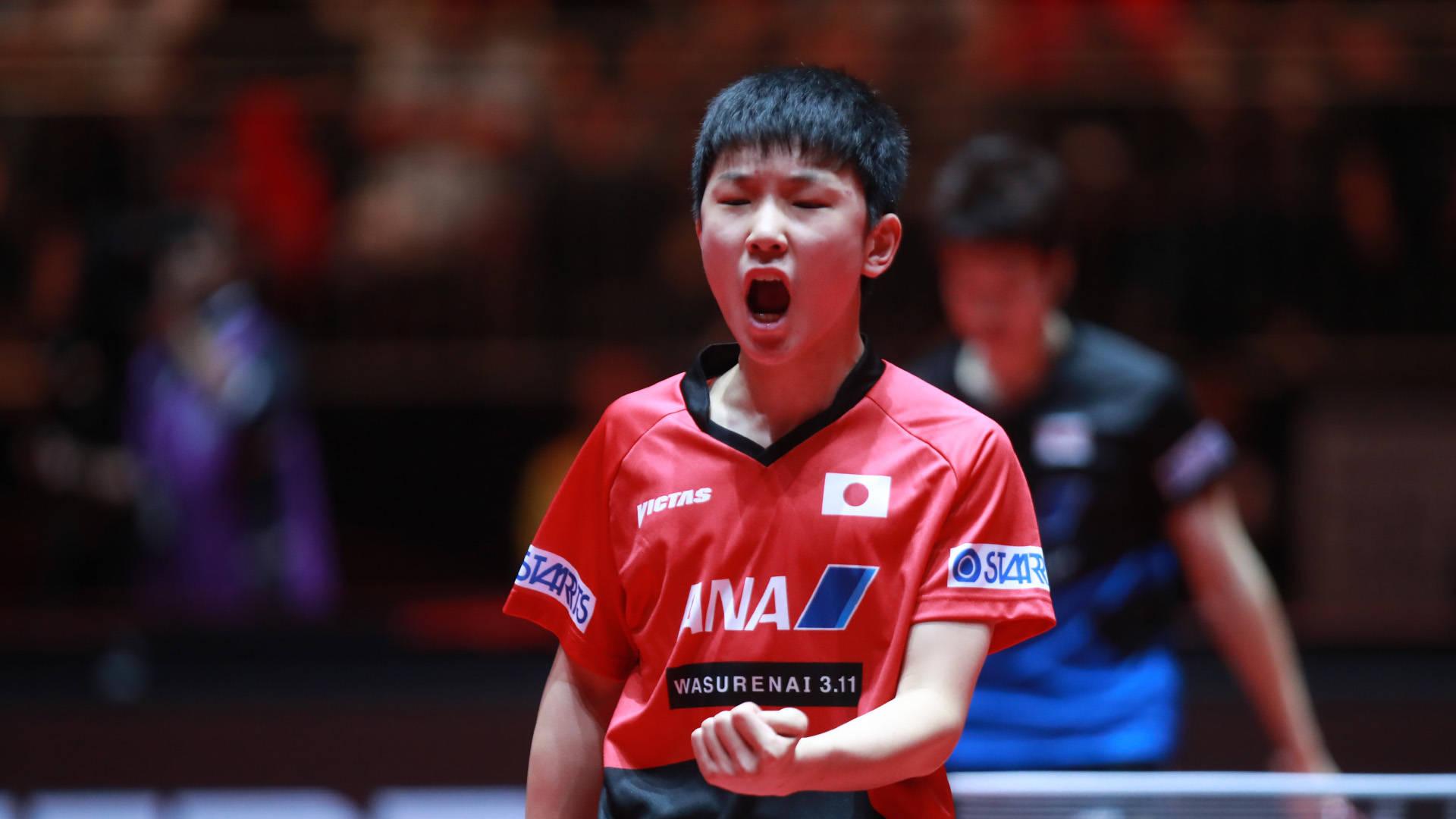 水谷隼:日本乒乓球未来的希望就寄托在张本智和身上了