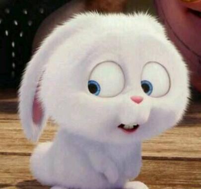 """4只""""萌兔兔"""", 唯独一只是坏兔兔, 能在3秒内找到, 绝对是真爱粉"""