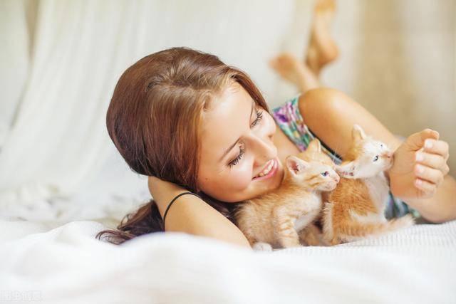 「主人」一旦养了,就只认定你一个主人了,这5种猫不要随便养