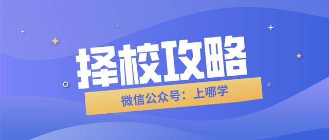 民办小学几乎全超额!上海这个区31所优质小学盘点!有你家对口的吗!