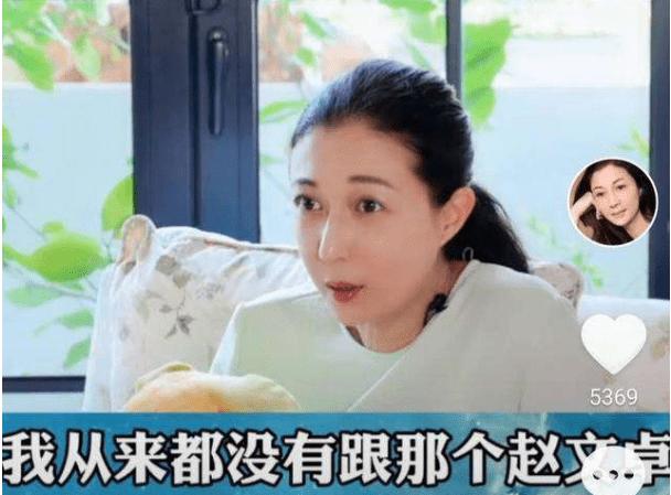 蛊惑赵文卓介入梅艳芳,生下成龙的女儿