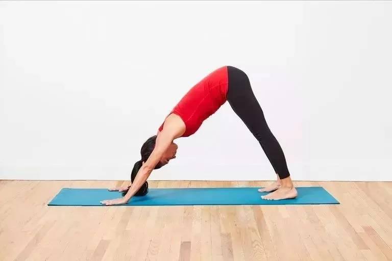常练这些体式,拉伸各处肌肉提升柔韧度,给全身做个免费SPA_动作