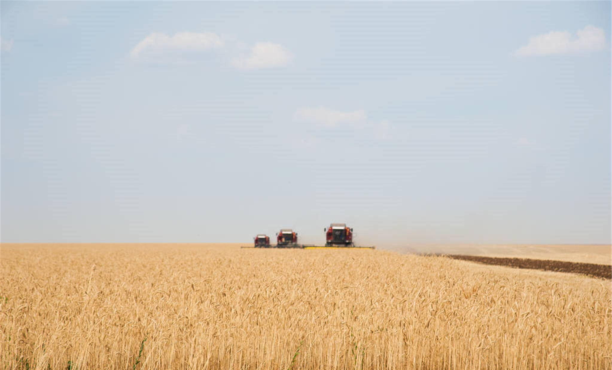 粮价上涨会影响粮食补贴吗?
