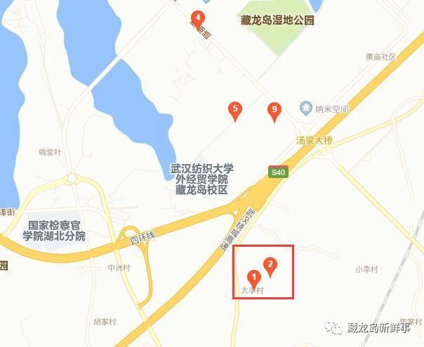 江夏藏龙岛大李村还建计划相关政策是怎样的?有关部门回复了