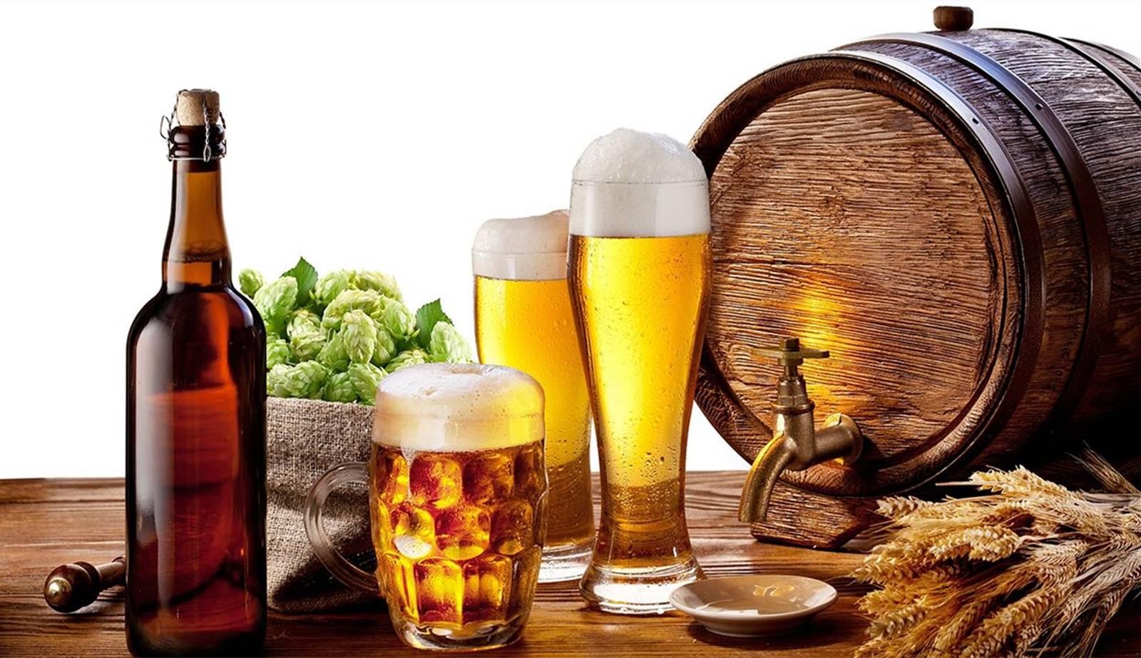 少量饮用啤酒对于自己的身体非但没有损害,还会有很多的好处?