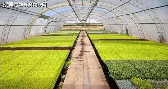 智慧农业是指利用物联网、人工智能、大数据等现代信息技术与农业进行深度融合