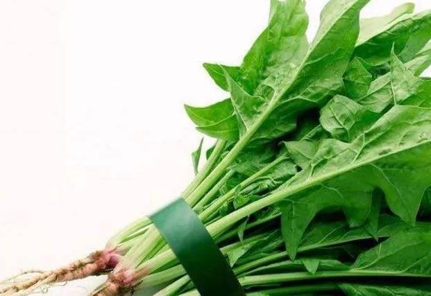 蔬菜吃完根别扔,变废为宝,治疗病症有奇效,小小根部用处极大!