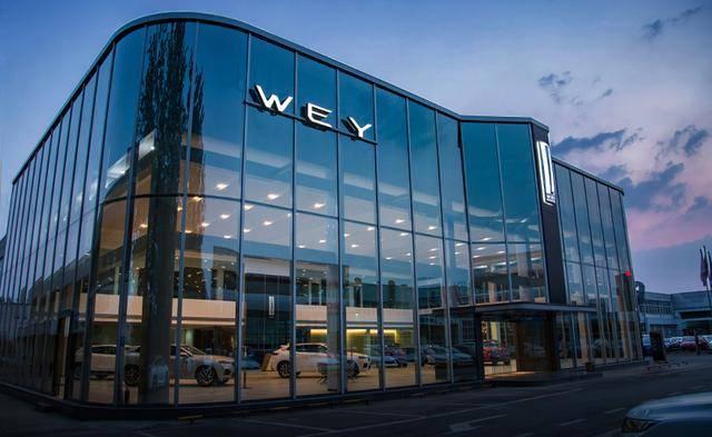 WEY品牌三大科技平台赋权,业主看完圈出