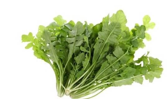 野菜虽好,但不宜多吃!还有几类人最好别吃