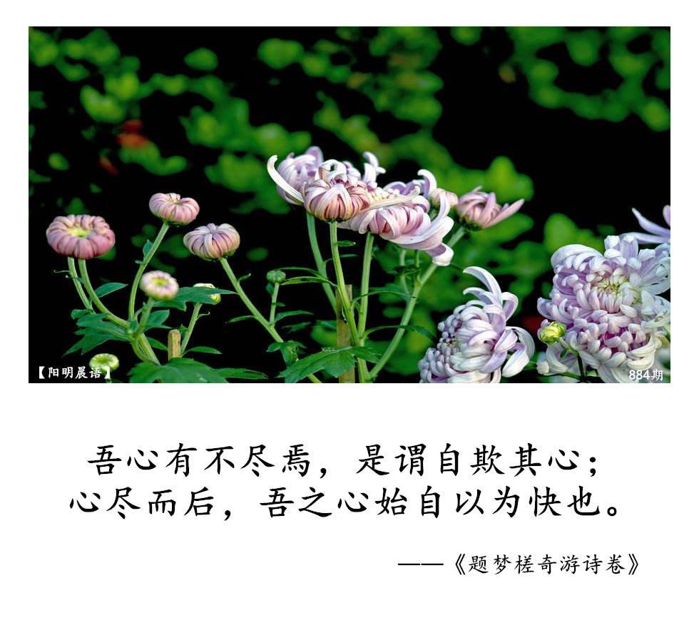 【阳明晨语】884号