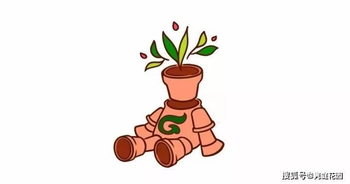 im体育首页:你知道在花园里选择容器的要点吗?