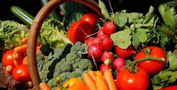 春季养肝季功效更好,掌握养肝技巧,拥有一个健康的身体