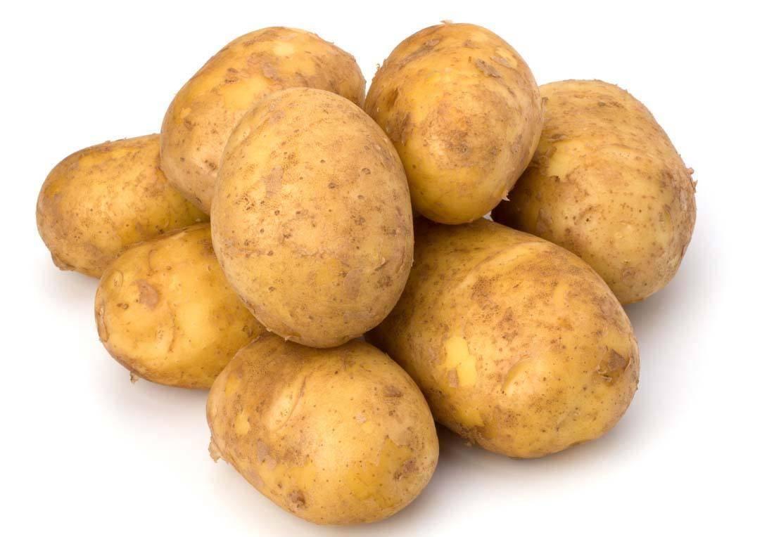 """婴儿几个月能吃土豆?要削皮吗?对婴儿康健有益吗?营养师见告""""网页版登陆界面""""(图1)"""
