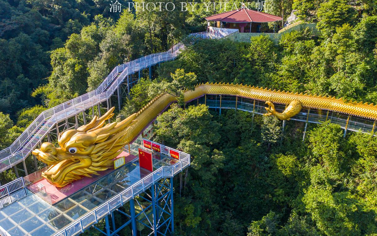 清远大山中发现世界最长黄金巨龙,名为添子龙,年轻夫妇特别喜欢