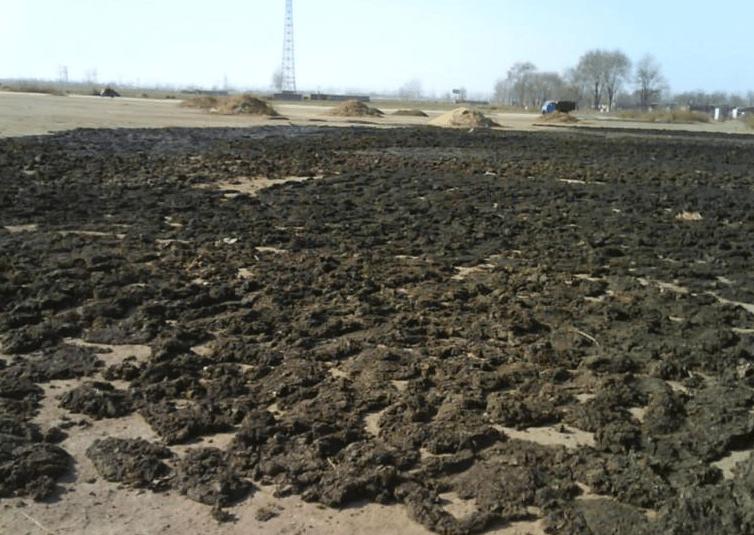 生物有机肥料生产工艺及技术