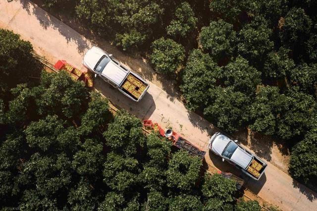 焕新而成!2021款风骏7再访褚橙生态园,造就中国第一民生工程车