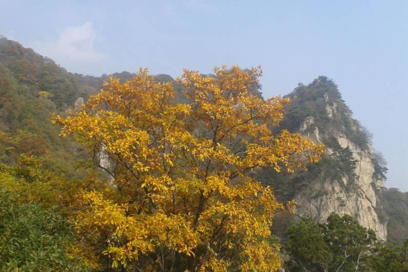 """西安又一山岳走红,景色宜人门票却免费,被称陕西""""小黄山"""""""