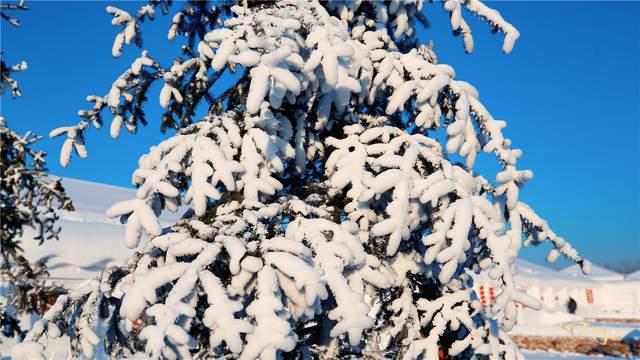 """冬季长春雪里屯的""""雪乡"""",还你一个物美价廉如梦如幻的童话王国"""
