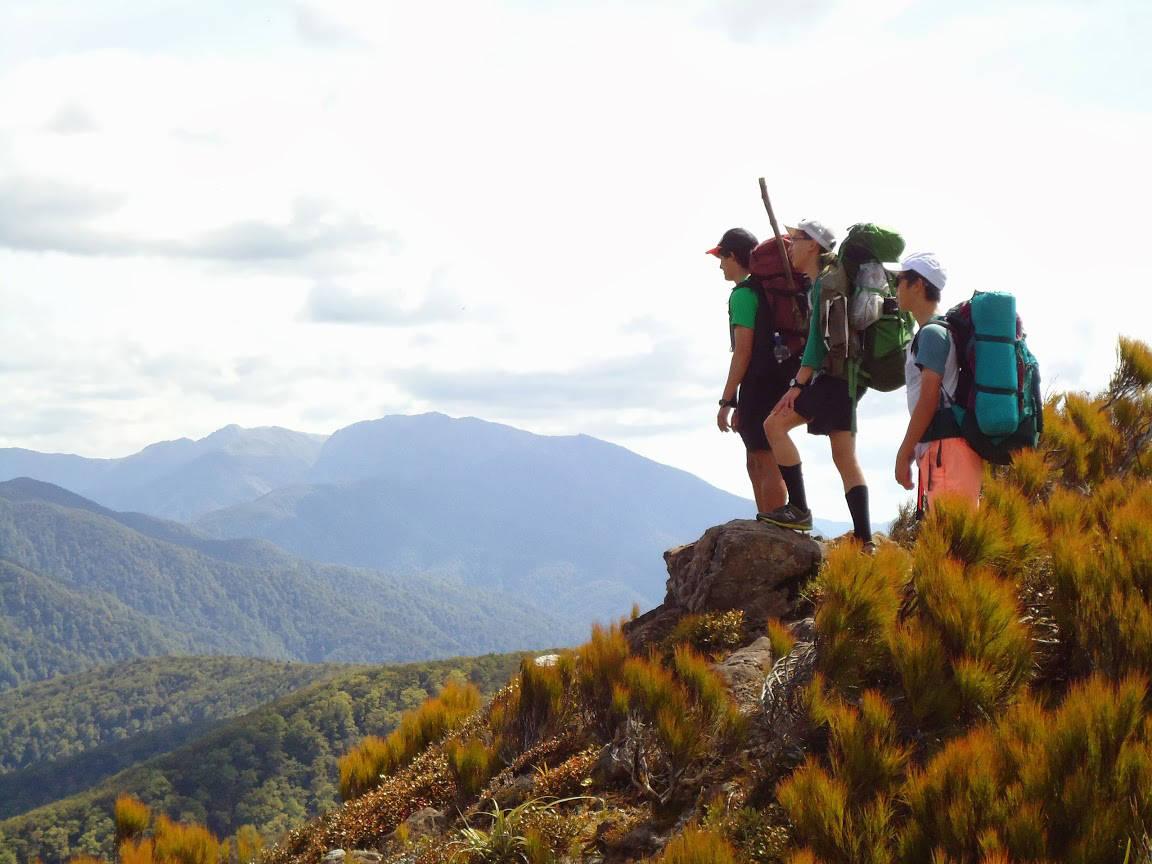 新西兰留学是一个很好的就业专业_im体育