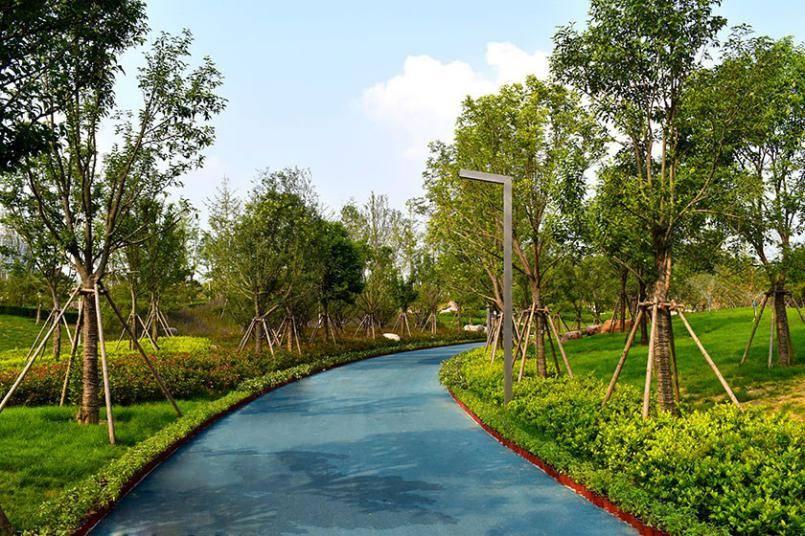 郑州一个公园音乐喷泉引发2万人观看,你去过这个公园吗?