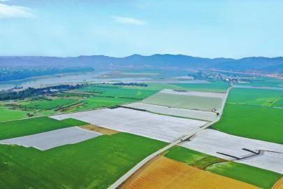 时隔20年 四川粮食产量再上700亿斤
