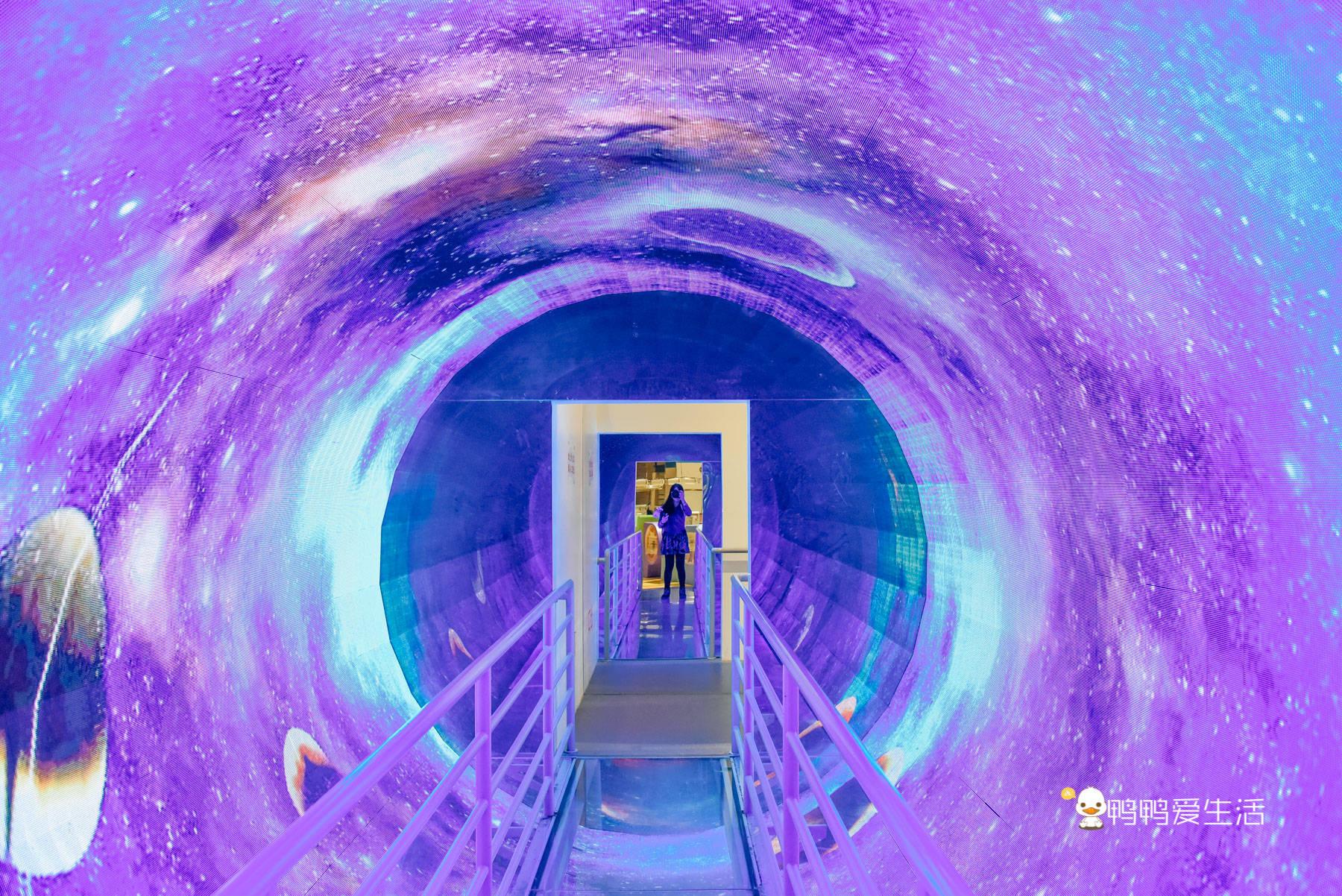 厦门亲子游好去处,走进科学世界,400项互动体验有趣又涨知识!