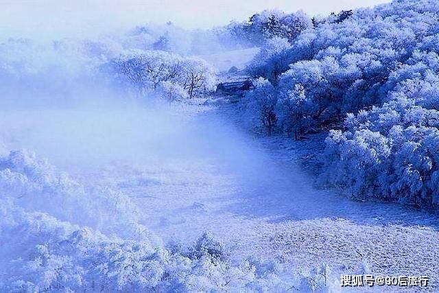 华北地区仅存的原始森林,面积达24800公顷,冬天还可以欣赏雾凇  第5张