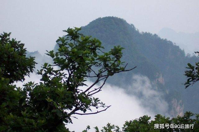 华北地区仅存的原始森林,面积达24800公顷,冬天还可以欣赏雾凇  第1张