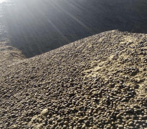 小小羊粪用处大,发酵有机肥造福西昌晚熟葡萄产业