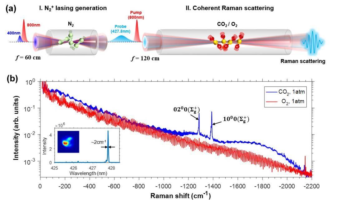 激光梳的原理_图表3:频率梳技术原理.