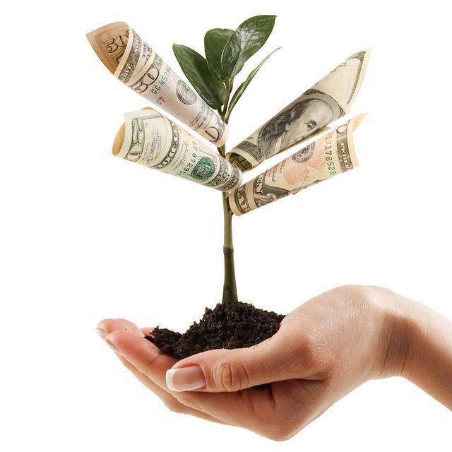 全国政协委员谢卫:将投资者教育纳入国民教育体系