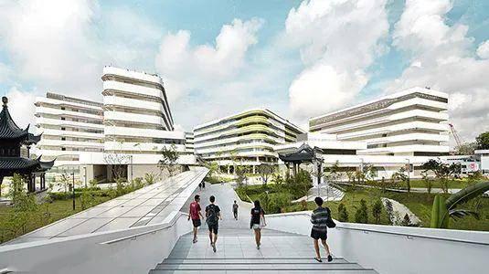 高等教育篇丨新加坡顶级名校有哪些?