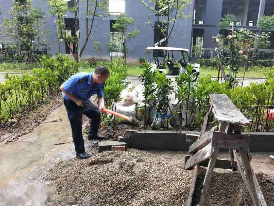 市民反映遂宁一小区公共绿化带变成私家花园,部门:依法拆除!