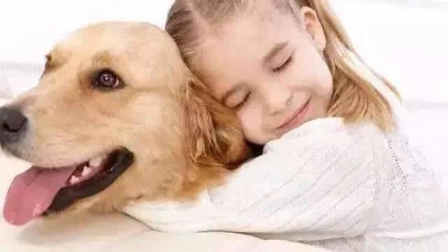 「宠物」不然对宝宝影响十分大,养宠物要注意这3点