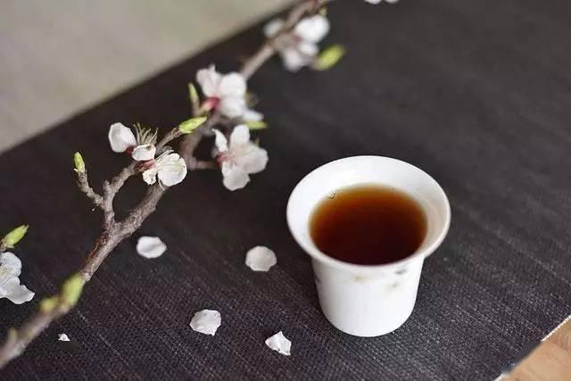 普洱普洱,你是茶还是药?