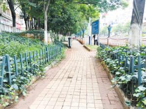 大街小巷更整洁 文明新风渐养成