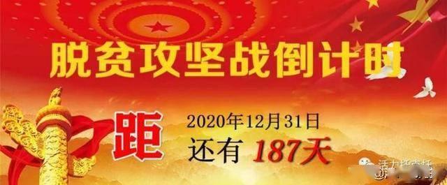 [庆祝建党99周年]托克托县优秀共产党员展(五)深