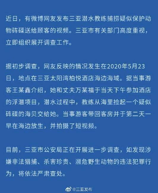 三亚有潜水教练被指捕捞疑似砗磲 官方:展开调查