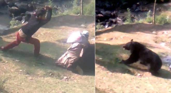 印度男子上班途中被熊袭击 身受重伤