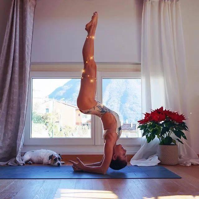 练瑜伽,头倒立、肘倒立、手倒立如何慢慢离墙?这3套过渡动作要常练!