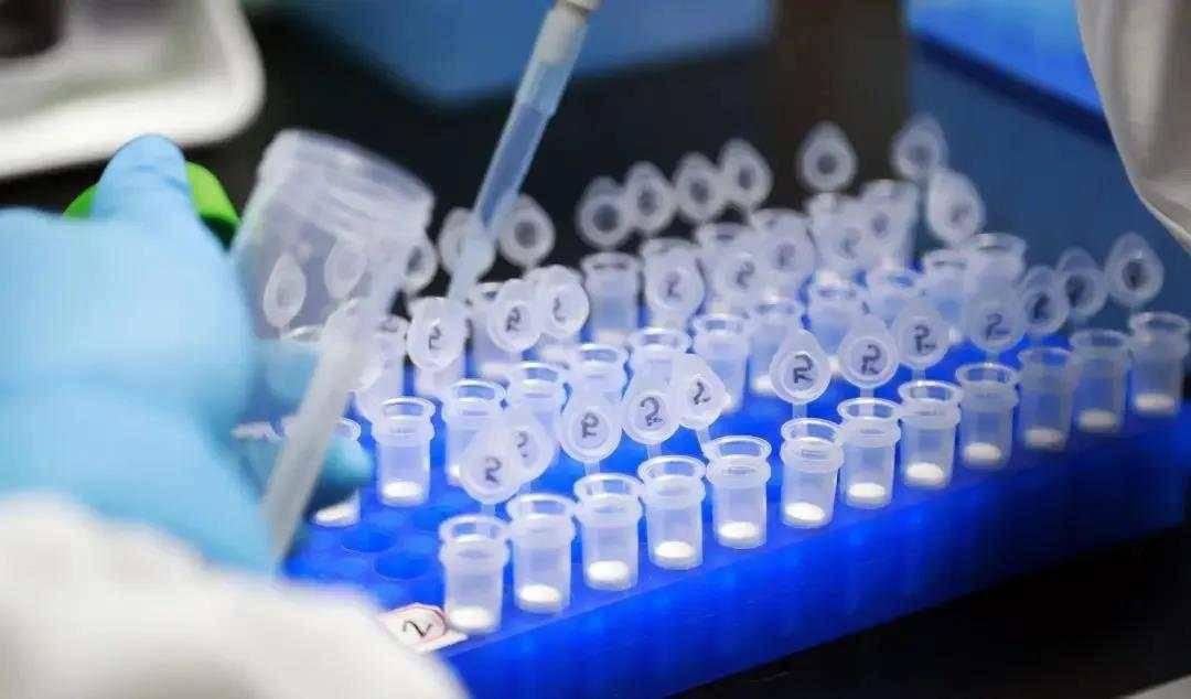 美国佐治亚州一夏令营数百名儿童感染新冠病毒