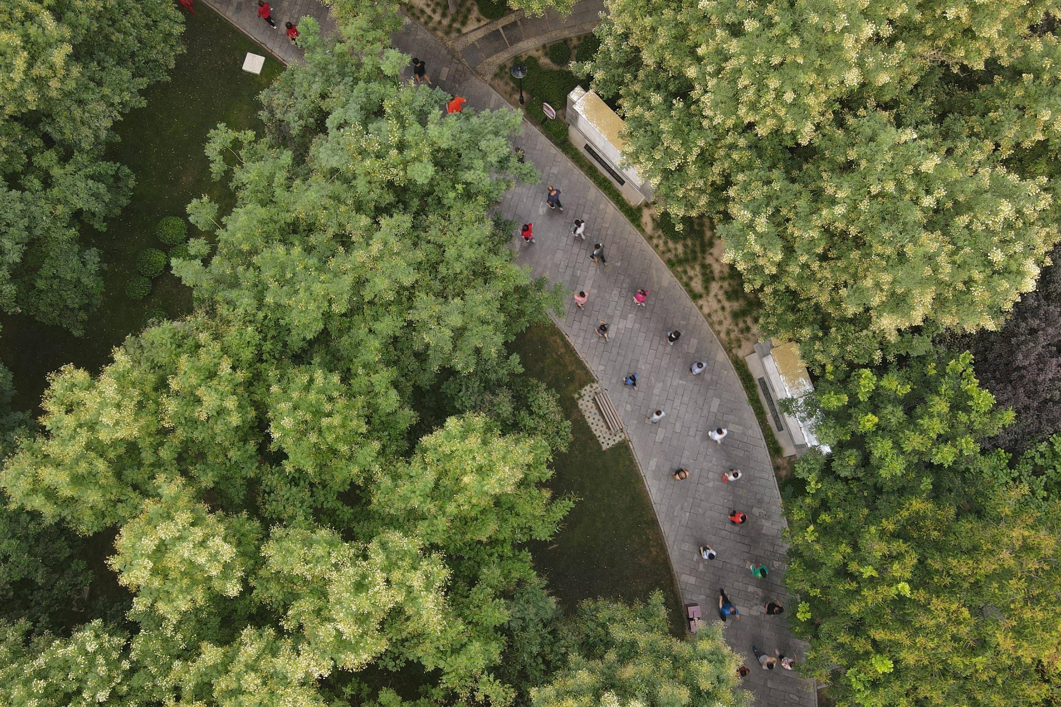 全民健身——河北邢台:公园徒步享健康
